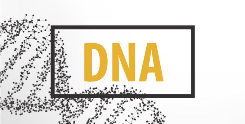 Predigtreihe: Unsere DNA