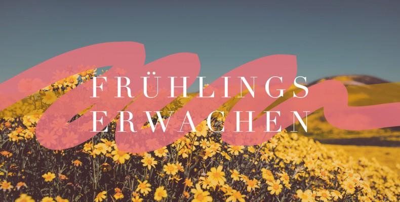 Predigtreihe: Frühlingserwachen